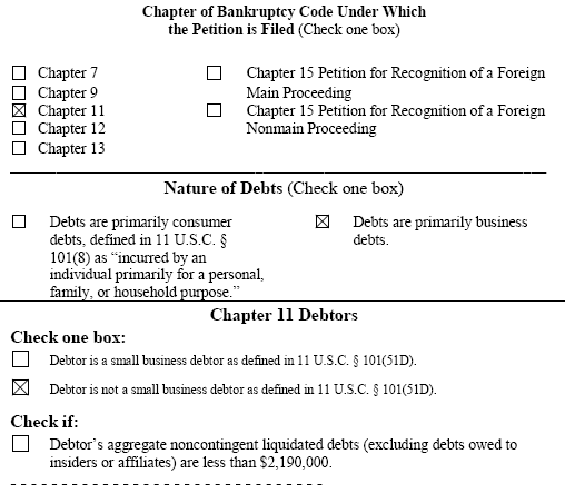 Chapter 11 Filing Lehman Brothers Auszug